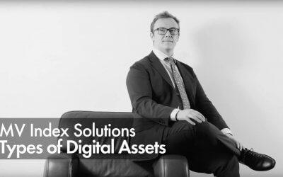 MV Index Solutions – Types of Digital Assets