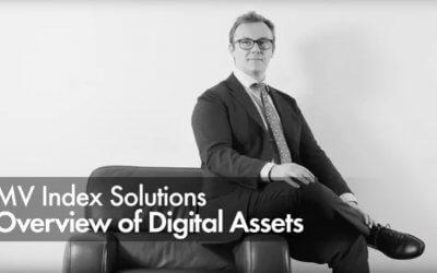 MV Index Solutions – Overview of Digital Assets