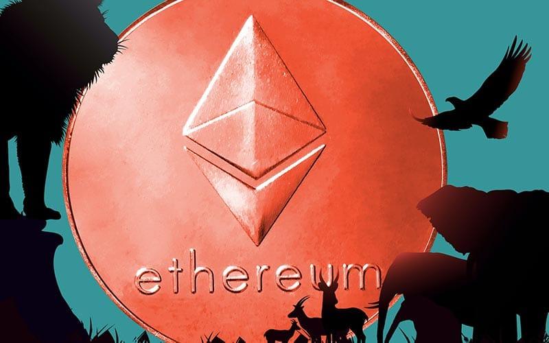 Het kleine broertje van de bitcoin groeit op