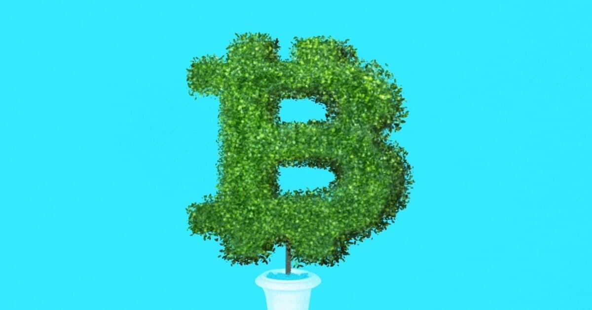 The Future of Bitcoin: 12 Scenarios